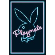 Playboy Playmate Neon Maxi Poster PP30363