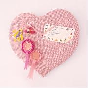 Gingham Pin Board