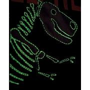 Glow In the Dark Dinosaur Fossil Lined Curtains